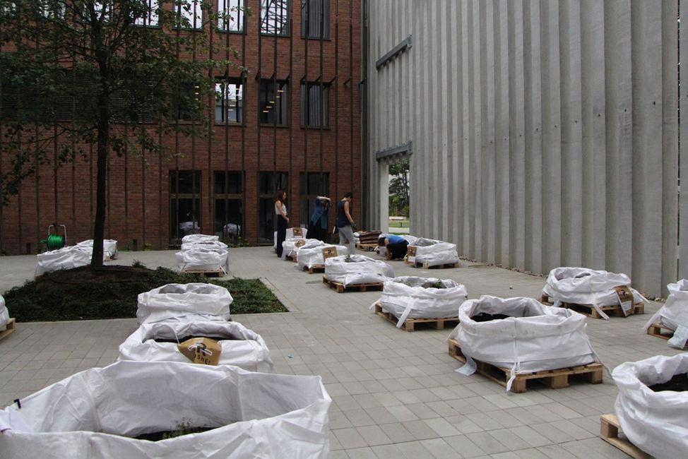 13 lipca 2016 roku Wojewódzka Biblioteka Publiczna im. Hieronima Łopacińskiego dołączyła do projektu ''Rosnę'' zakładając własny ogródek warzywny na patio Centrum Spotkania Kultur