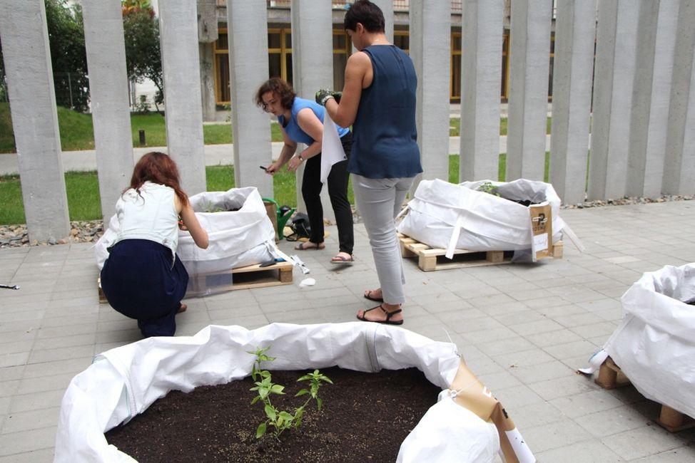 Ogródek przygotowały: Agata Kozioł (Dział Informacji i Promocji) oraz Iwona Jurkowska (Dział Udostępniania)
