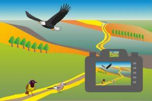 Konkurs plastyczny i fotograficzny imienia Artura Tabora o tematyce przyrodniczej pt. ''Ptasi świat''