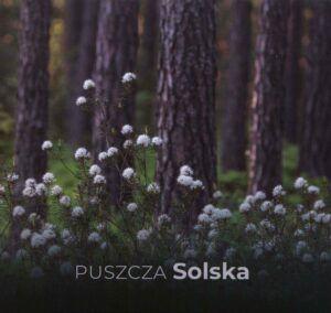 Puszcza Solska, red. Przemysław Stachyra, Paweł Szewczyk, Paweł Marczakowski, wyd. Lubelskie Towarzystwo Ornitologiczne, Lublin 2020.